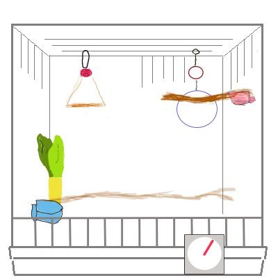 温度計はケージの外の見えやすい位置に設置する