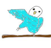 片方の羽・足を左右交代で伸ばすのは何かをしようとするときの行動
