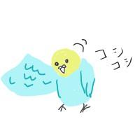 羽ずくろいはリラックスできているサイン