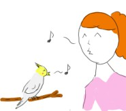 インコの鳴き声に合わせて飼い主が口笛を吹くことから始ます。
