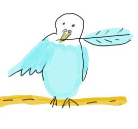 インコが羽を引き抜いている