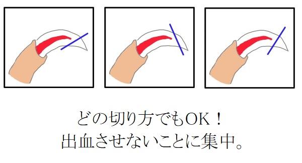 爪を切る角度はどの角度でも問題なし。